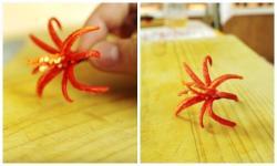 Cách tỉa hoa từ ớt